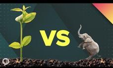 Which Life Form Really Dominates Earth? Video