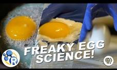 3 Egg-cellently Weird Science Experiments Video