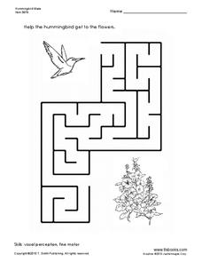 Hummingbird Maze Worksheet