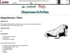 HYPOTHESIZE THIS! Lesson Plan