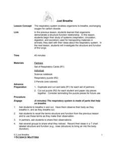 Just Breathe Lesson Plan