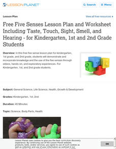 """Sense"" Scientist! Lesson Plan"