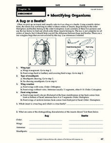Identifying Organisms Worksheet