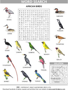 Word Search: African Birds Lesson Plan