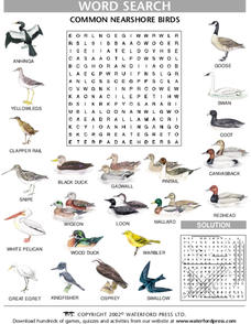 Word Search: Common Nearshore Birds Lesson Plan