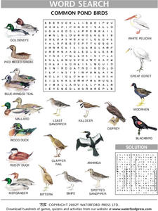 Word Search:Common Pond Birds Lesson Plan