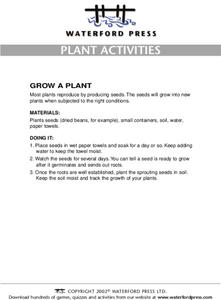 Plant Activities: Grow a Plant Lesson Plan