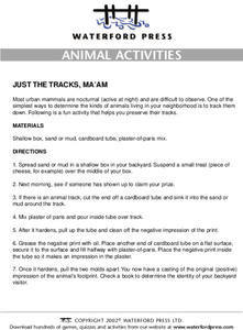 Animal Activities: Just the tracks, ma'am Lesson Plan