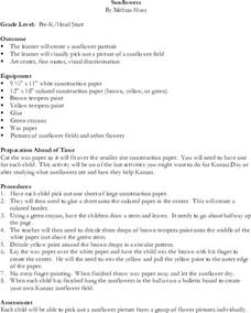 Sunflowers Lesson Plan