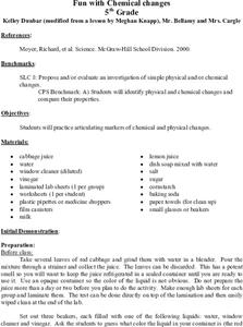 Fun With Chemical Changes Lesson Plan