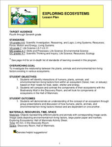 Exploring Ecosystems Lesson Plan