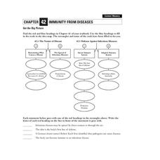Immunity From Diseases Worksheet