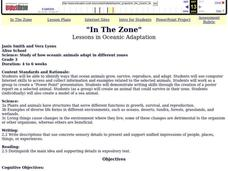 In The Zone Lesson Plan