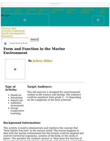 Form and Function in the Marine Environment Lesson Plan
