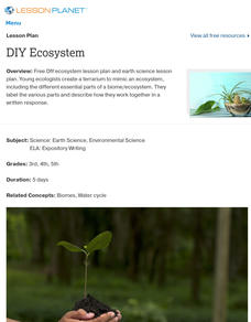 DIY Ecosystem Lesson Plan
