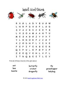 Insect Word Search Worksheet