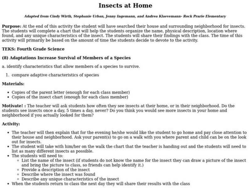 Insects at Home Lesson Plan
