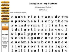 Integumentary System Worksheet