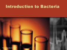 Introduction to Bacteria Presentation