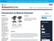 Introduction to Natural Selection Lesson Plan