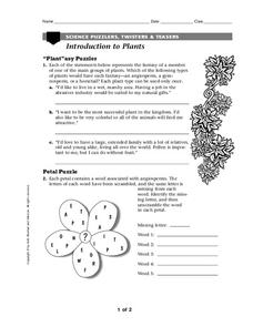 Introduction To Plants Worksheet