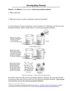 Investigating Osmosis Worksheet for 7th - Higher Ed | Lesson Planet