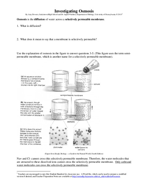 Diffusion and Osmosis Lesson Plans & Worksheets Reviewed by Teachers