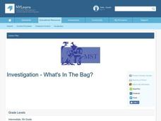 Investigation - What's In The Bag? Lesson Plan