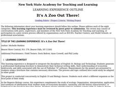 It's A Zoo Out There! Lesson Plan
