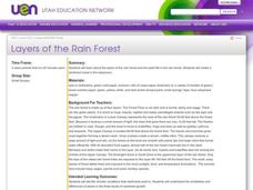 Layers of the Rainforest Lesson Plan