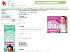 Learning About Trees Lesson Plan