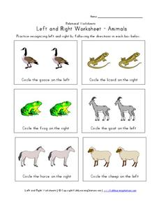 Left and Right Worksheet - Animals Worksheet