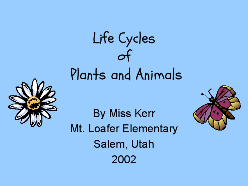 Life Cycles of Plants and Animals Presentation