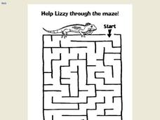 Lizard Maze Worksheet