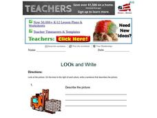 Look and Write Worksheet
