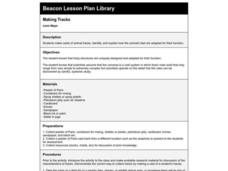 Making Tracks Lesson Plan