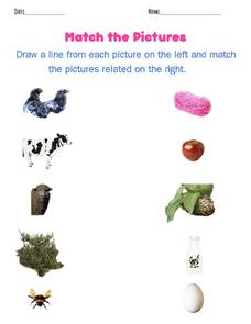Match the Pictures Worksheet