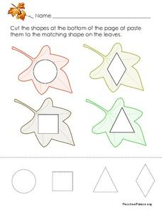Matching Shapes Lesson Plan