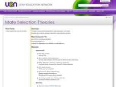 Mate Selection Theory Lesson Plan