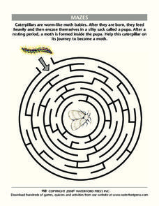 Mazes Lesson Plan