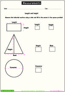 Measurements Worksheet