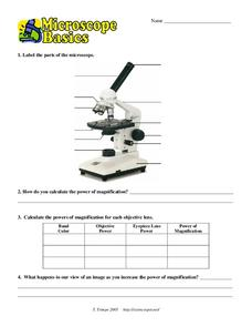 Microscope Basics Worksheet
