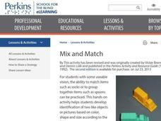 Mix and Match Lesson Plan