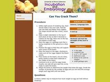 Can You Crack Them? Lesson Plan