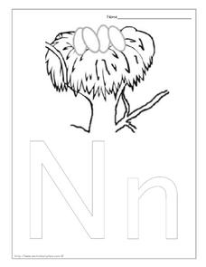 N is for Nest Worksheet