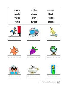 Name the Picture: 1 Syllable Words Lesson Plan