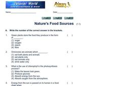 Nature's Food Sources Worksheet