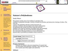 Nature's Polyhedrons Lesson Plan