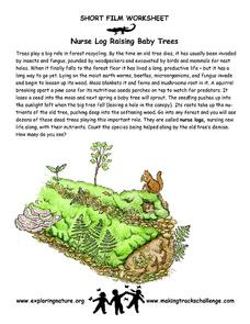 Nurse Log Raising Baby Trees Worksheet