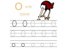 O is for Ostrich Worksheet